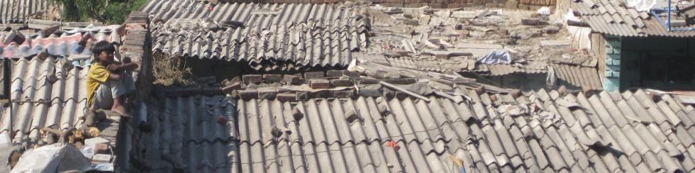 rsz_1amrose_photo_corrugated_metal_roofing_1-002